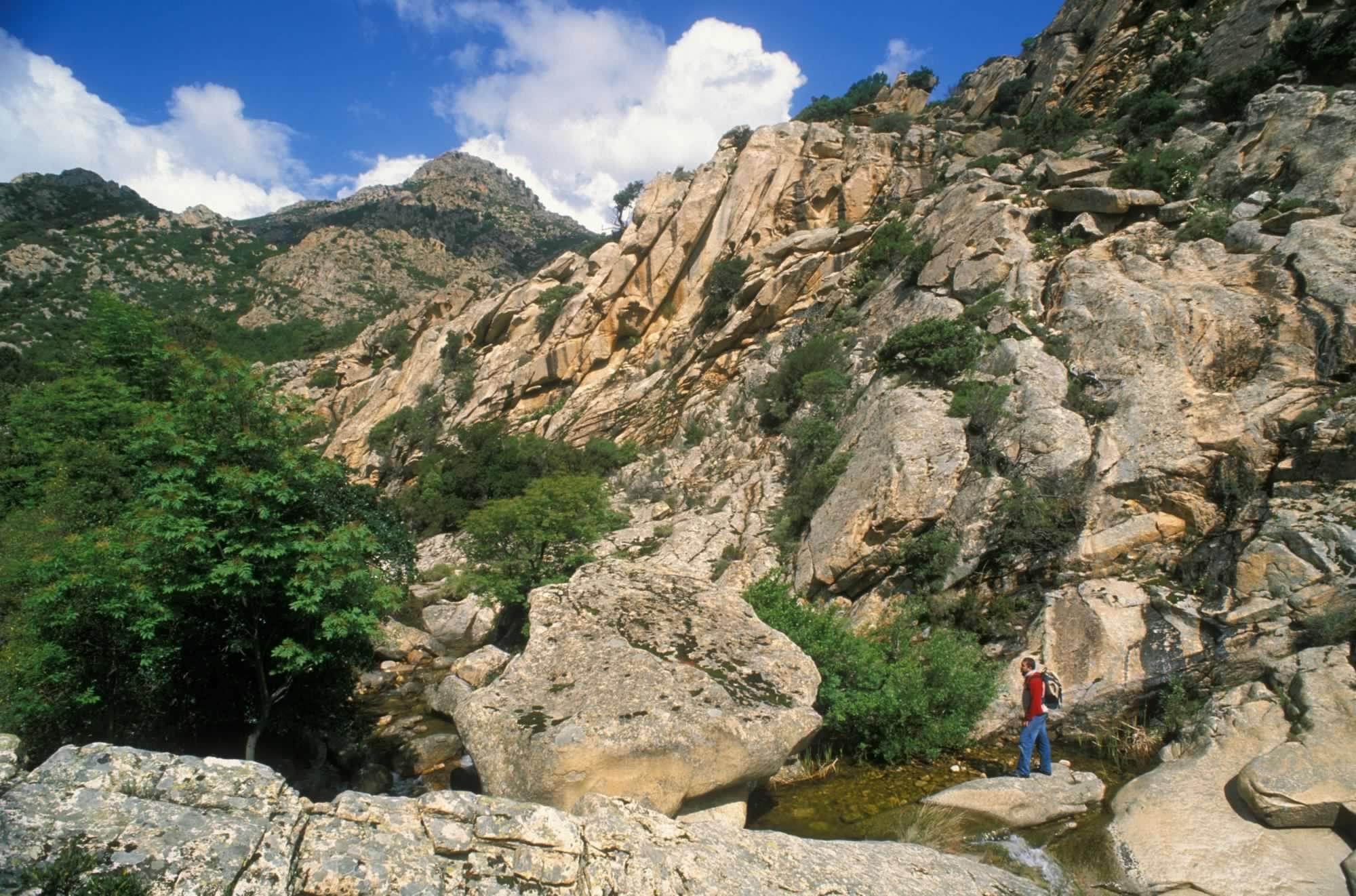 Località Monte Nieddu San Teodoro